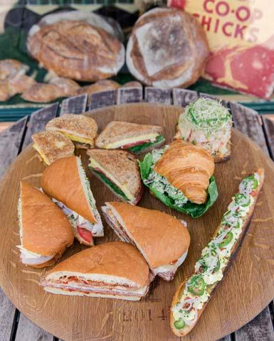 photos_lunch_sandwich_plate