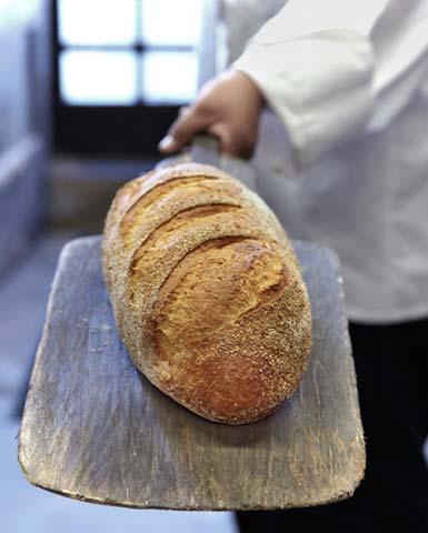 photos_napa_bread